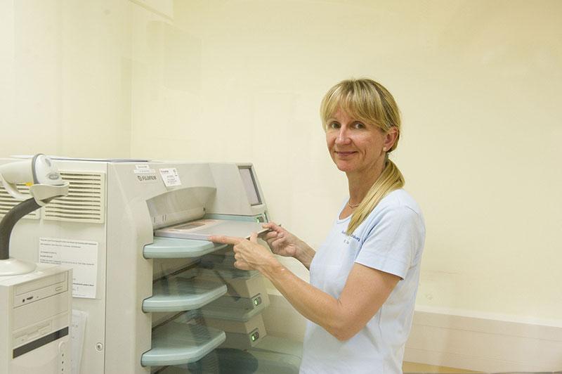 mammographie vechta